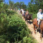 Camino de Santiago a Caballo 17