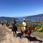 Camino de Santiago a Caballo 5