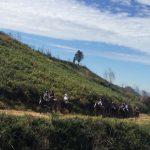 Camino de Santiago a Caballo 9